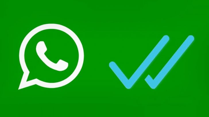 How to Know Who Viewed Your WhatsApp Profile Today?
