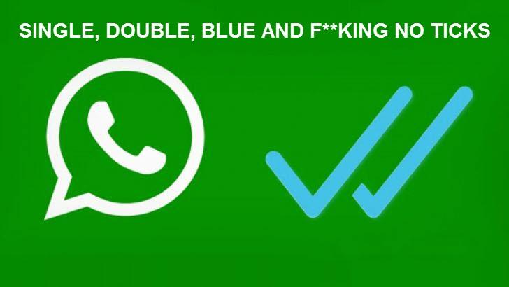 whatsapp ticks meaning